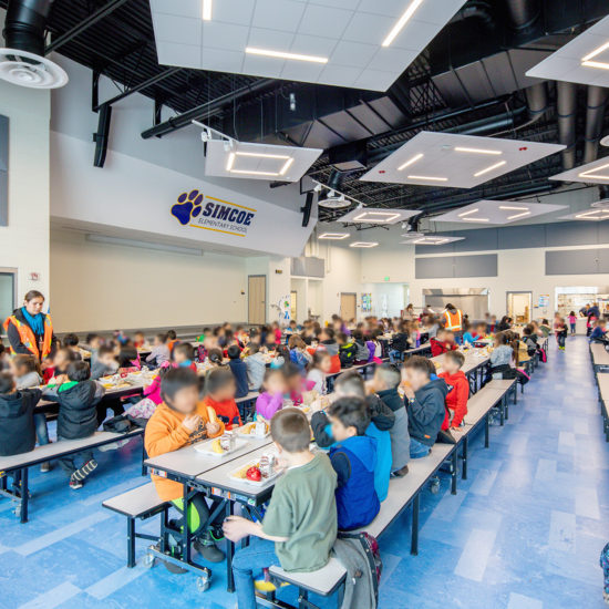 Simcoe Elementary Commons